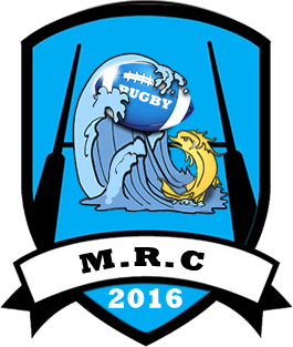 rugby loire